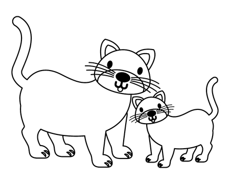 cats pet on white background vector illustration