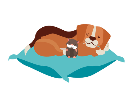 beagle dog and hamster pet on cushion vector illustration