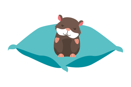 cute hamster pet on cushion vector illustration Stock Vector - 127683292