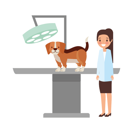 veterinary doctor female and dog clinic petcare vector illustration Banque d'images - 112115944
