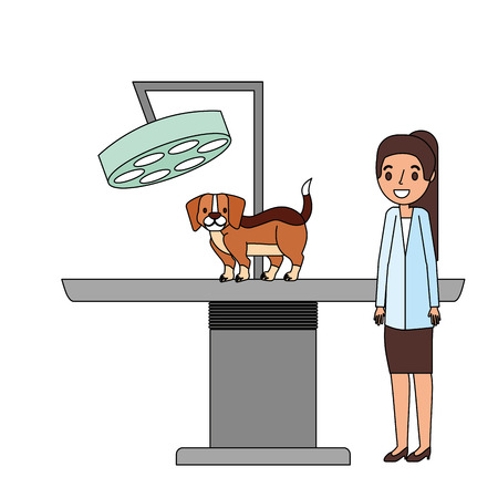 veterinary doctor female and dog clinic petcare vector illustration Stock fotó - 112115945