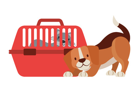 beagle dog and cat on cage vector illustration