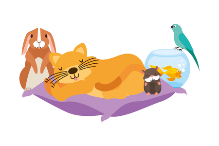 cat hamster rabbit and bird goldfish on cushion bed vector illustration
