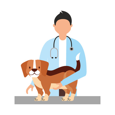 doctor beagle dog veterinary clinic petcare vector illustration