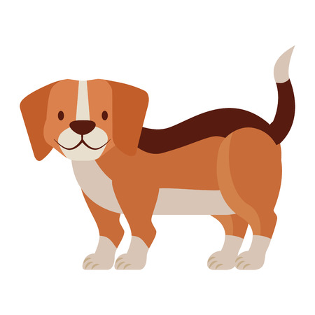 beagle dog on white background vector illustration Stok Fotoğraf - 112115949