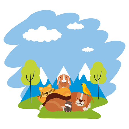 dog cat hamster rabbit and bird loutdoors vector illustration