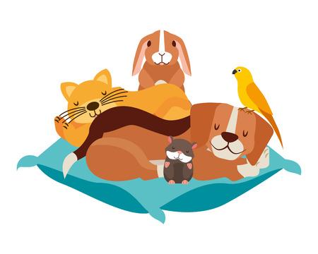 dog cat hamster rabbit and bird on cushion bed vector illustration