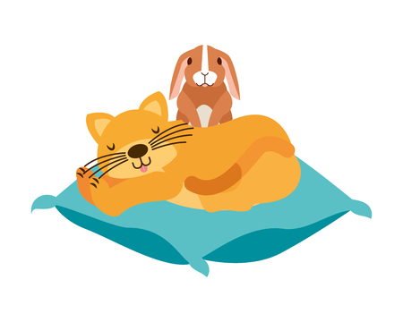 cat and rabbit pet on cushion vector illustration
