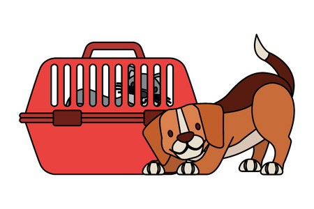 beagle dog and cat on cage vector illustration Zdjęcie Seryjne - 127683359