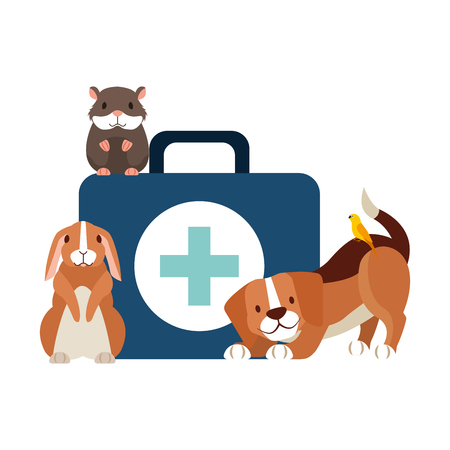 dog hamster and rabbit and kit medicine veterinary clinic petcare vector illustration