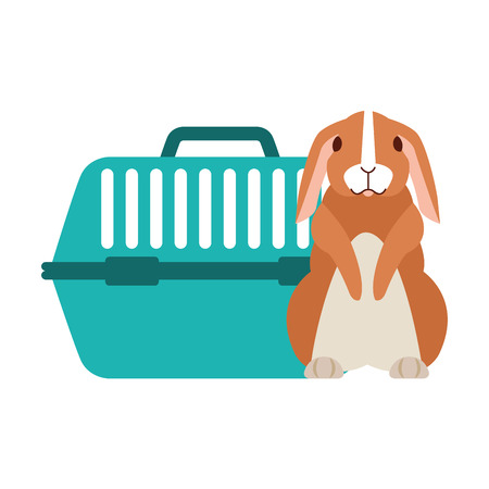 cute rabbit and pet cage vector illustration Archivio Fotografico - 127685371
