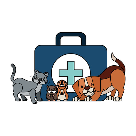 kit first aid dog cat rabbit hamster veterinary clinic petcare vector illustration