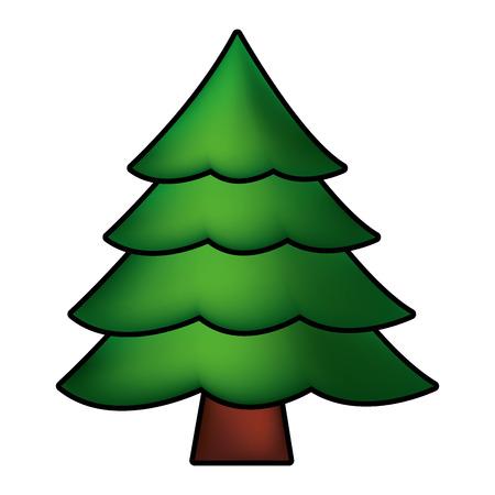 pine tree on white background vector illustration