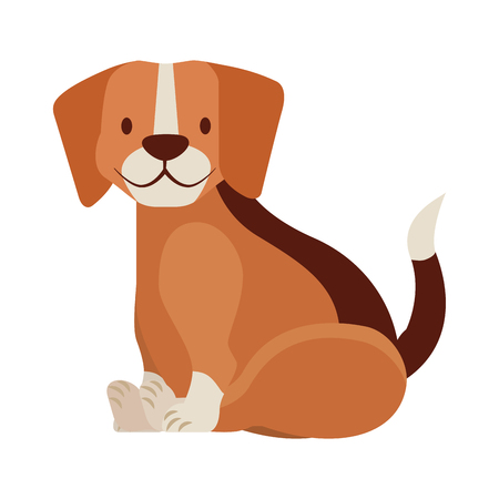 beagle dog pet on white background vector illustration Ilustrace