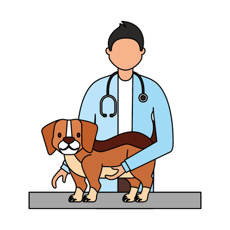 doctor beagle dog veterinary clinic petcare vector illustration