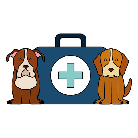 dogs and kit medicine veterinary clinic petcare vector illustration