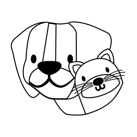 dog and cat pet on white background vector illustration