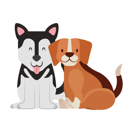 beagle and siberian dogs pet vector illustration