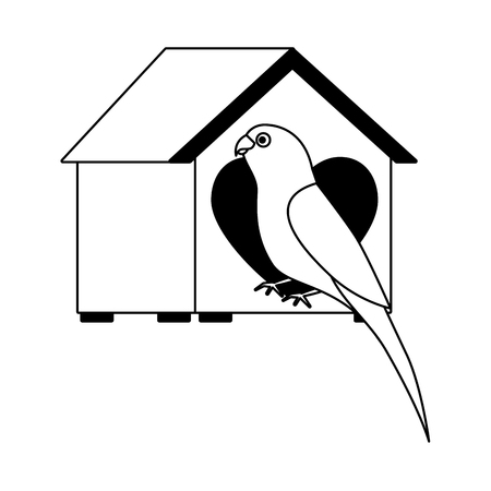 parrot with wooden house pet vector illustration