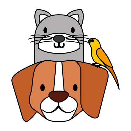 pets dog and cat canary bird vector illustration