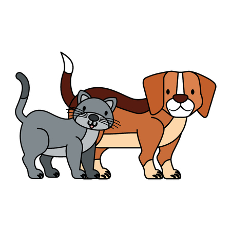 pets dog and cat on white background vector illustration