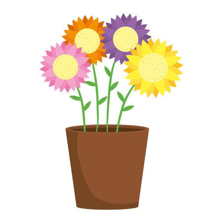 cute sunflowers in pot vector illustration design Illustration