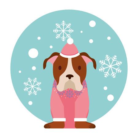 dog snowflake winter clothes christmas vector illustration