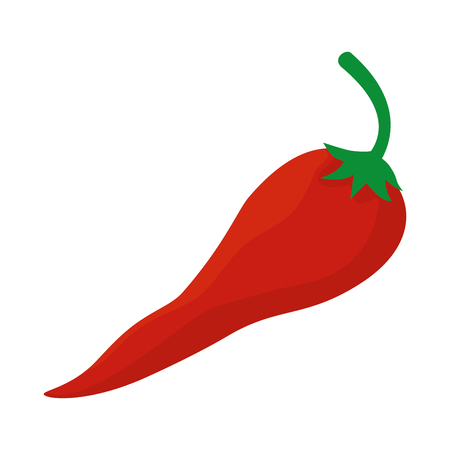 fresh chili pepper vegetable icon vector illustration design