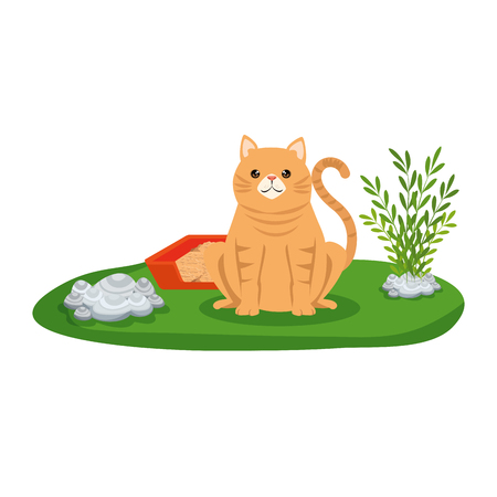 cute cat with sandbox in the grass vector illustration design