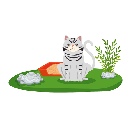 cute cat with sandbox in the grass vector illustration design Stock Vector - 127475968