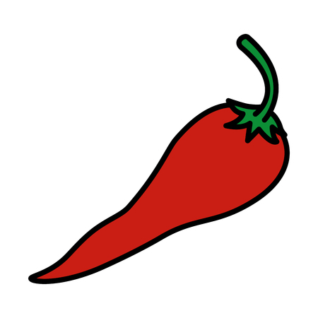 fresh chili pepper vegetable icon vector illustration design