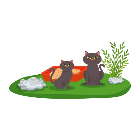 cute cats with sandbox in the grass vector illustration design