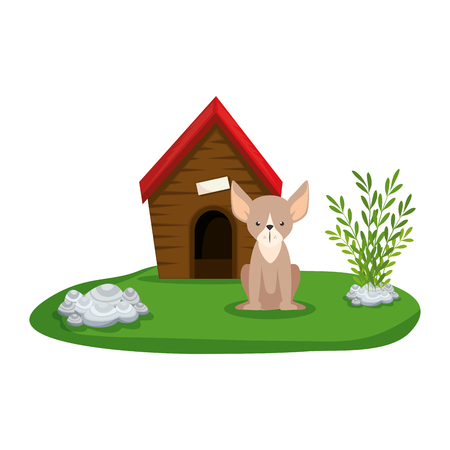 cute dog with house wooden in the grass vector illustration design Stock Illustratie