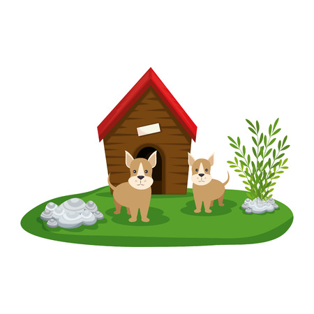 cute dogs with house wooden in the grass vector illustration design Stock Vector - 127476004