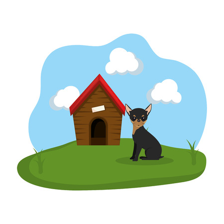 cute dog with house wooden in the grass vector illustration design Ilustracja