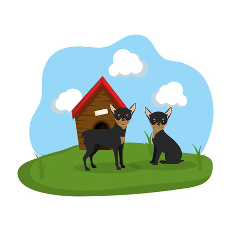 cute dogs with house wooden in the grass vector illustration design Standard-Bild - 127476036