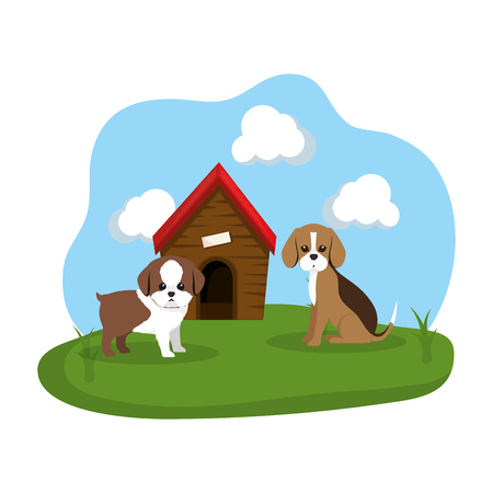 cute dogs with house wooden in the grass vector illustration design Stock Vector - 127476043