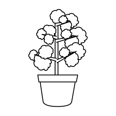 houseplant in pot icon vector illustration design