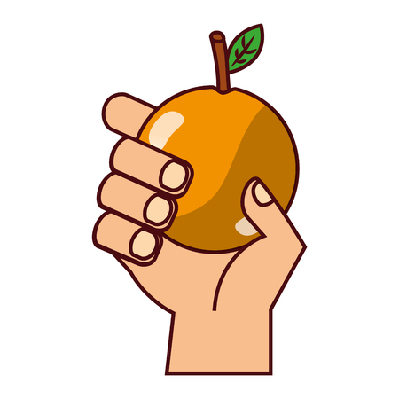 hand with orange on white background vector illustration