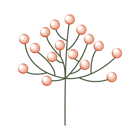 branch with berries nature floral vector illustration