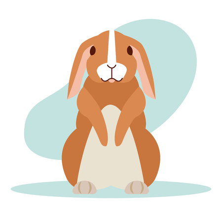 Lapin mignon cartoon animal vector illustration design vector illustration