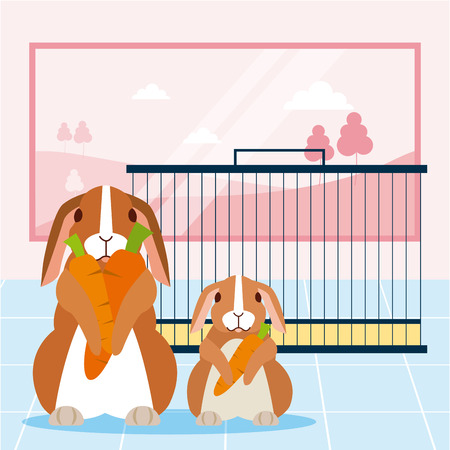cute rabbits with carrots cage pet vector illustration