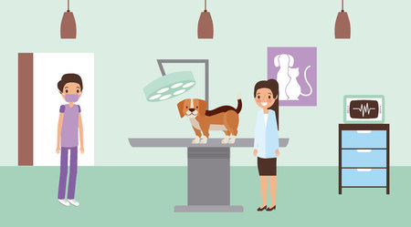 doctors with dog examination veterinary clinic petcare vector illustration Иллюстрация