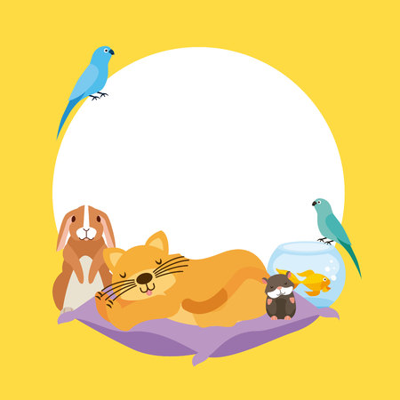 cat hamster rabbit and bird goldfish on cushion bed vector illustration Фото со стока - 112788791