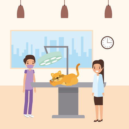 veterinary doctor with cat examination clinic vector illustration