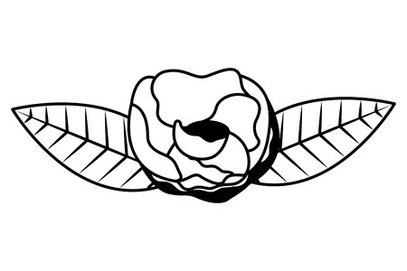 rose flower on white background vector illustration