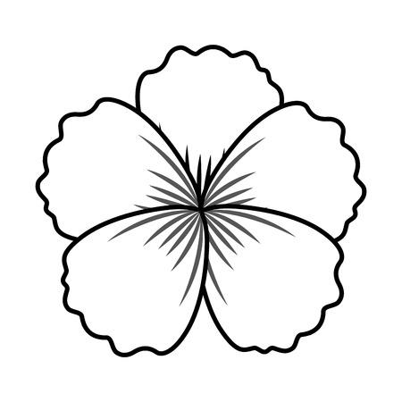 flower ornament on white background vector illustration