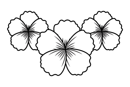 flowers decoration on white background vector illustration Illustration