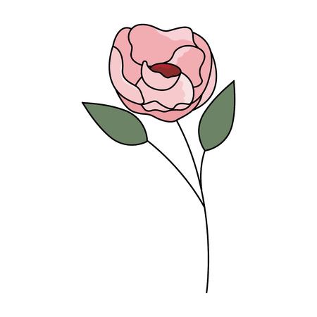 flower stem botanical on white background vector illustration