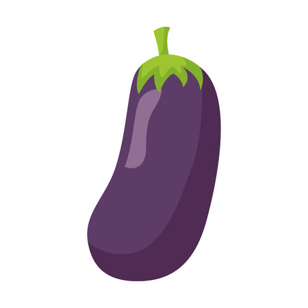 eggplant fresh healthy food on white background  vector illustration